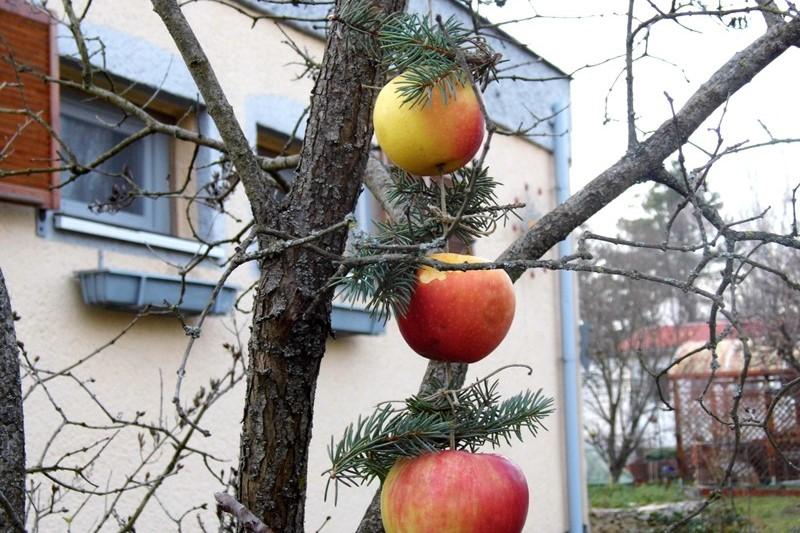Apfelkette