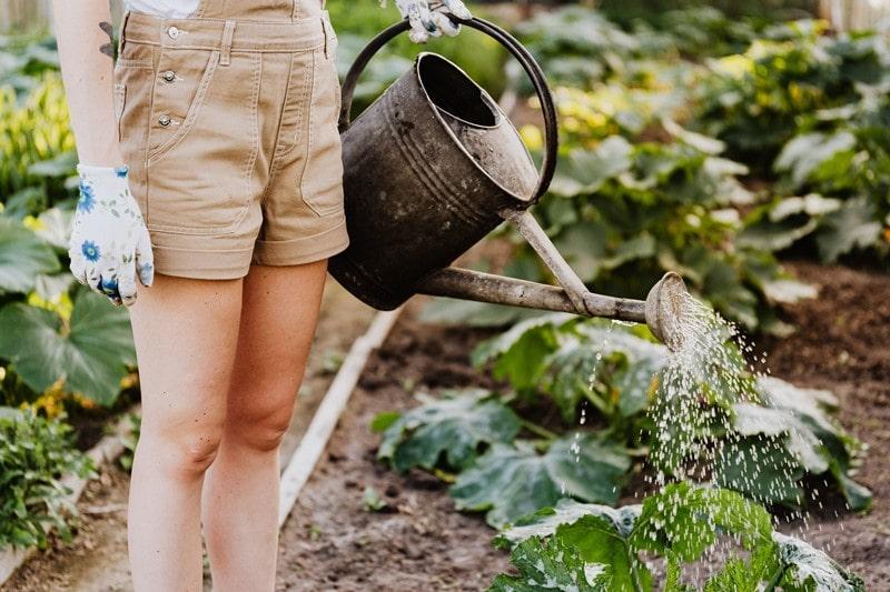 Eine Frau gärtnert
