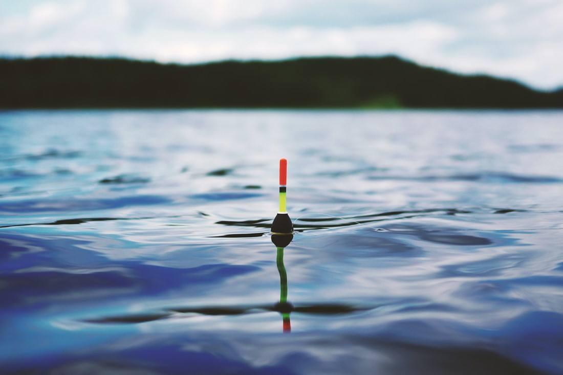 Die Schwimmpose einer Angel auf einem See